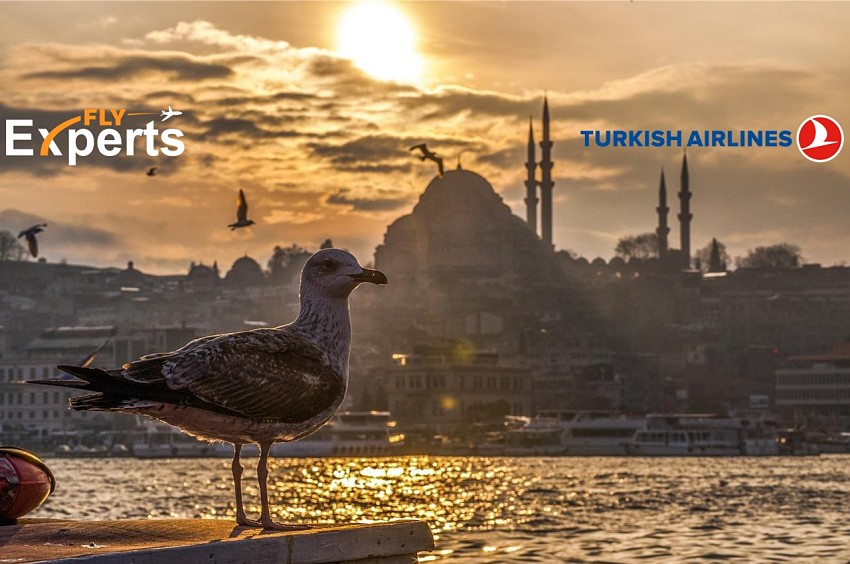 Turkish Airlines - pogodnosti dužih konekcija u Istanbulu